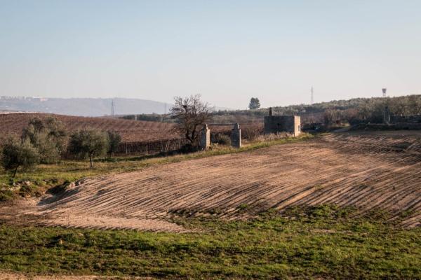 Attività-per-le-scuole-Puglia
